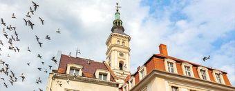 Panorama Prudnika - najważniejsze informacje o mieście