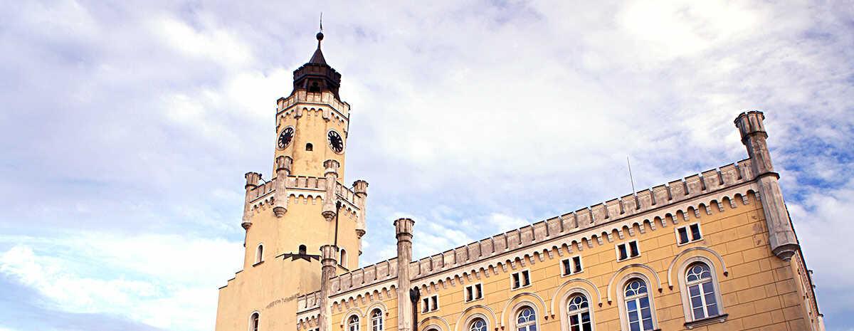 Panorama Wschowa - najważniejsze informacje o mieście